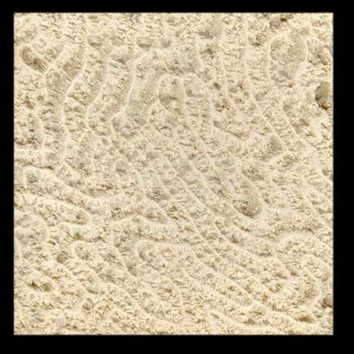 Coral Stone Wall Cladding : Coral fossil and coquina stone lightweight